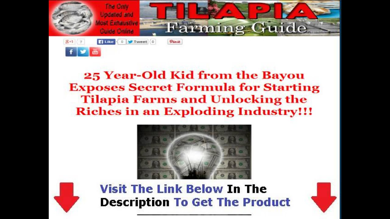 abaca production guide in the philippines pdf