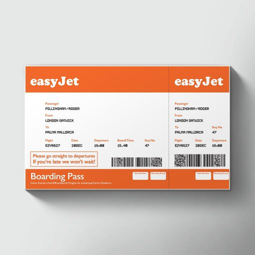 coa guidelines for lost ticket